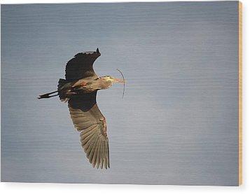 Great Blue Heron In Flight Wood Print by Ann Bridges