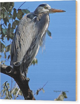 Great Blue Heron Perched Wood Print by DigiArt Diaries by Vicky B Fuller