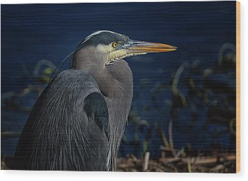 Wood Print featuring the photograph Great Blue Heron by Randy Hall