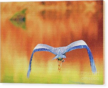 Wood Print featuring the digital art Great Blue Heron Winging It Photo Art by Sharon Talson