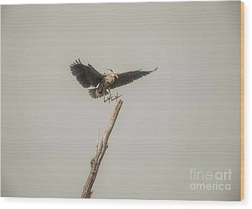 Wood Print featuring the photograph Great Blue Landing by David Bearden