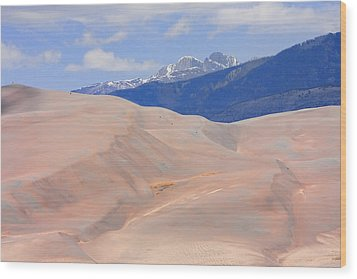 Great Colorado Sand Dunes Wood Print by James BO  Insogna