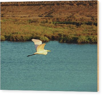 Wood Print featuring the digital art Great Egret In Flight by Timothy Bulone