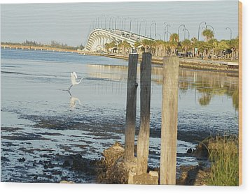 Wood Print featuring the photograph Great Egret Takes Flight by Lynda Dawson-Youngclaus