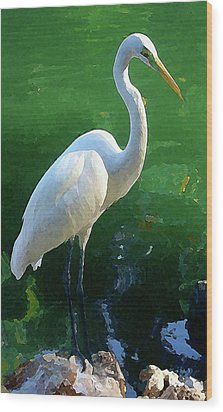 Wood Print featuring the digital art Great Egret by Timothy Bulone