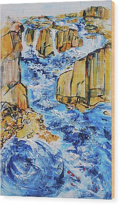 Great Falls Waterfall 201754 Wood Print by Alyse Radenovic