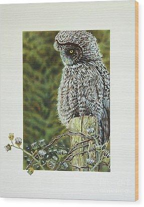 Great Grey Owl Wood Print by Greg and Linda Halom