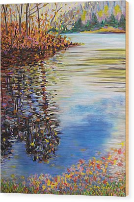Great Hollow Lake In November Wood Print by Polly Castor