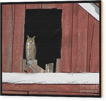 Wood Print featuring the photograph Great Horned Owl by Daniel Hebard