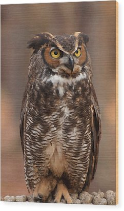 Great Horned Owl Digital Oil Wood Print by Chris Flees