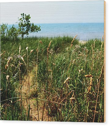 Wood Print featuring the photograph Great Lake Beach Path by Michelle Calkins