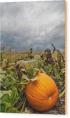 Great Pumpkin Off Center Wood Print