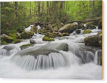 Great Smoky Mountain Roaring Fork Spring Cascade Wood Print by Mark VanDyke