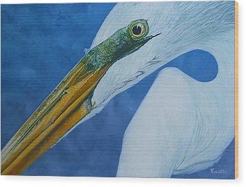 Great White Egret Wood Print by Jon Ferrentino