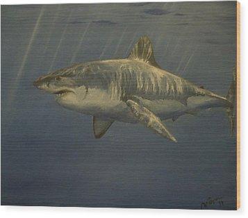 Great White Shark Wood Print by Alexandros Tsourakis