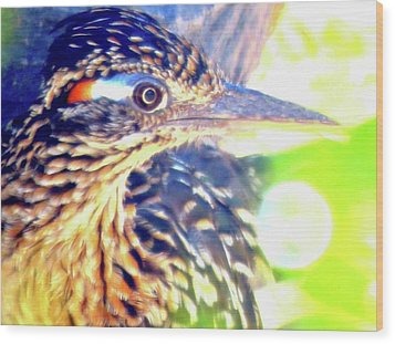 Greater Roadrunner Portrait 2 Wood Print