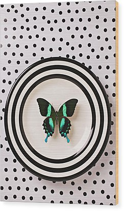 Green And Black Butterfly On Plate Wood Print by Garry Gay