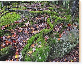Green And Serene Wood Print by Thomas R Fletcher