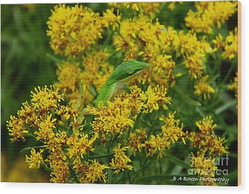 Green Anole Hiding In Golden Rod Wood Print