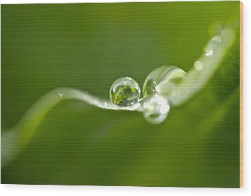 Green Crystal Wood Print