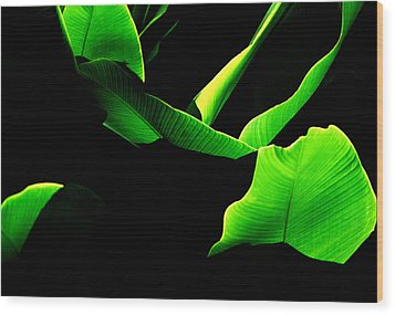 Green Energy Wood Print by Michael Mogensen