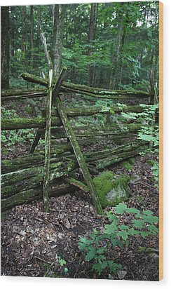 Green Fence Wood Print by Pat Purdy
