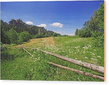 Green Fields Wood Print by Jaroslaw Grudzinski