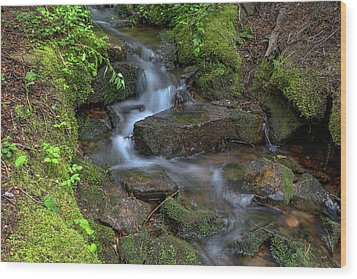 Wood Print featuring the photograph Green Flowing Stream by James BO Insogna