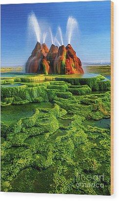 Green Fly Geyser Wood Print by Inge Johnsson