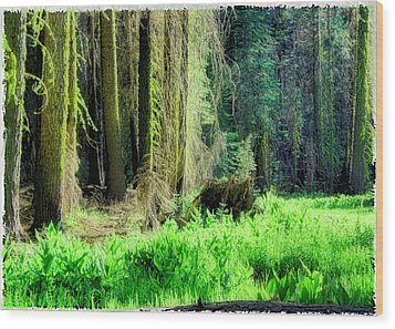 Green Forest Wood Print by Michael Cleere
