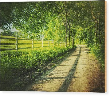 Green Gallop Wood Print