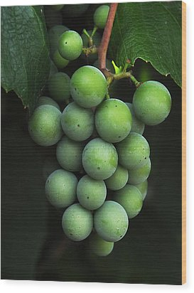 Green Grapes Wood Print by Marion McCristall
