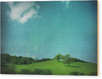 Green Grass Blue Sky Wood Print by Laurie Search