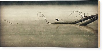 Green Heron In Dawn Mist Wood Print by Kathy Barney