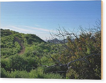 Wood Print featuring the photograph Green Hills And Bushes Landscape by Matt Harang