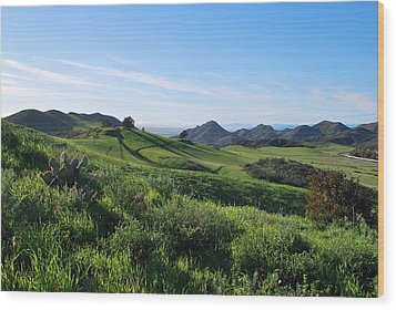 Wood Print featuring the photograph Green Hills Landscape With Cactus by Matt Harang