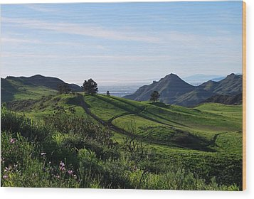 Wood Print featuring the photograph Green Hills Purple Flowers Foreground  by Matt Harang