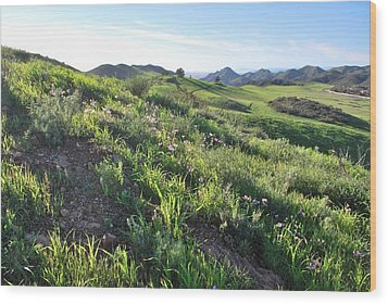 Wood Print featuring the photograph Green Hills Purple Flowers - Rocky View by Matt Harang
