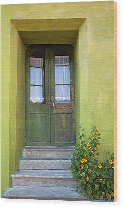 Green House Wood Print by Gabriela Insuratelu