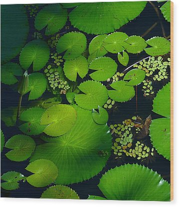 Green Islands Wood Print