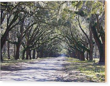 Green Lane Wood Print by Carol Groenen