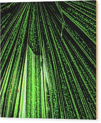 Green Leaf Forest Photo Wood Print