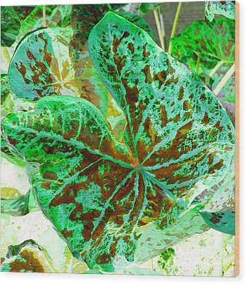 Green Leafmania 2 Wood Print by Marianne Dow