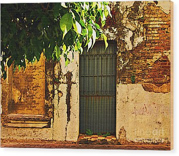Green Leaves And Wall By Michael Fitzpatrick Wood Print by Mexicolors Art Photography