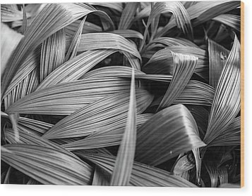 Leaves Textured And Background Wood Print