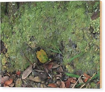 Green Man Spirit Photo Wood Print by Gina O'Brien