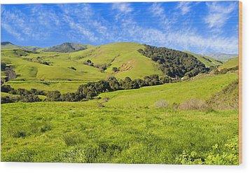 Green Meadow Santa Ynez Valley Ca Wood Print by Eyal Nahmias