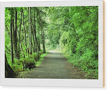Green Path Wood Print by J D Banks