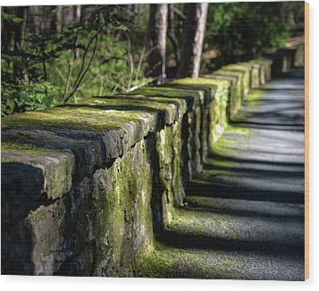 Wood Print featuring the photograph Green Stone Wall by James Barber