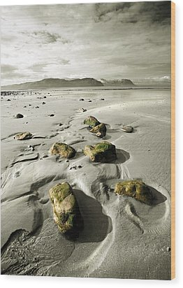 Green Stones On A North Wales Beach Wood Print by Mal Bray